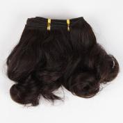 Wigsroyal 2 Bundles 20cm Loose Curly Wave Hair Extensions, 120ml/Bundle, Indian Virgin Remy Hair Weaves