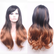 AneShe 70cm Women's Long Curly Hair Harajuku Style Heat Resistant Hair Wigs for Cosplay/Party
