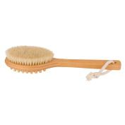 FANTCEN Body Brush for Dry Brushing Vegan Cellulite Massage Brush Bristle Body Brush Shower Shed-Free Long Handle Spa Quality for Detox Brushing and Exfoliating Skin
