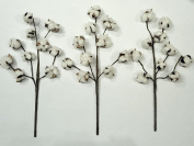 Cotton Stems - 3 Stems/Pack - 10 Cotton Buds/Stem - 50cm Tall - Farmhouse Style Floral Display Filler