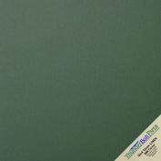 25 Dark Green Linen 80# Cover Paper Sheets - 30cm X 30cm (30cm X 30cm ) Scrapbook Album Cover Size - 36kg/pound Card Weight - Fine Linen Textured Finish - Deep Dye Quality Cardstock