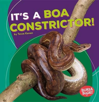 It's a Boa Constrictor! (Bumba Books Rain Forest Animals)