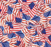 Hydrographic Film - Water Transfer Printing - Hydro Dipping - American Flags - 1 Metre