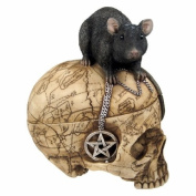 PTC Pacific Giftware Salem Witch Witchcraft Skull with Pentagram Pentacle Mouse Jewellery Trinket Box Statue Figurine