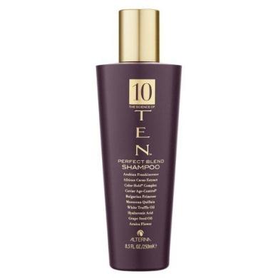Alterna Ten Perfect Blend Shampoo (250Ml)