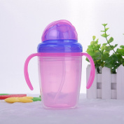 230ml Double Layer Heat Insulation Babies Kid Straw Cup Drinking water Bottle training cup