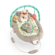 Disney Baby Winnie The Pooh BOUNCER, Dots and Hunny Pots Deluxe BABY BOUNCER