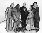 Judy Garland Wizard of Oz 8x10 Photo JG26