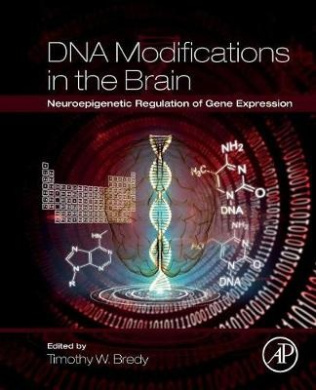 DNA Modifications in the Brain: Neuroepigenetic Regulation of Gene Expression