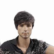 STfantasy 30cm Handsome Short Grey Men Wigs For Daily Use