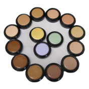 Creamy Concealer, Hypo Allergenic T.V. Touch Concealer, Full Coverage Foundation - Lite Amber