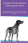 Auvergne Pointer (Braque D'Auvergne) Activities Auvergne Pointer Tricks, Games & Agility. Includes  : Auvergne Pointer Beginner to Advanced Tricks, Series of Games, Agility and More