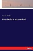 The Palaeolithic Age Examined