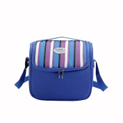 Yvonnelee 6 Litre Tote Insulated Cool Coller Lunch Bags for Men Women Girls and Boys Work and School Small - Blue