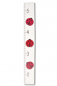 Ladybug Growth Height Chart