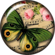 Snap button Music Roses Butterfly 18mm Cabochon chunk charm