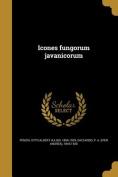 Icones Fungorum Javanicorum [LAT]