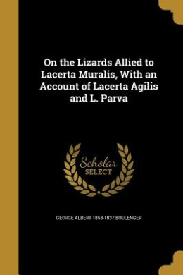 On the Lizards Allied to Lacerta Muralis, with an Account of Lacerta Agilis and L. Parva