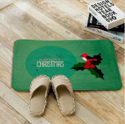 Non-slip and water absorbent cartoon door mat featured with Merry chritmas suitable for indoor and outdoor use(40*60cm) , green bird leaves