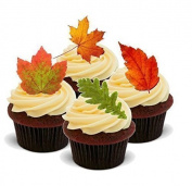 NOVELTY MIXED AUTUMN LEAVES - Standups 12 Edible Standup Premium Wafer Cake Toppers - 2 x A5 sheet - 12 images