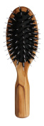 Lilywoods Travel Hairbrush - w/ Rubber Cushion, Pure Bristles & White Styling Pins - Travel Size