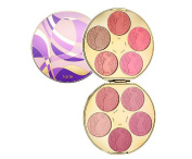Tarte Works of Tarte Colour Wheel Amazonian Clay Blush Palette