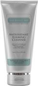 Dr Lisa Benest Skin Care Antioxidant Foaming Cleanser 6.7 fluid ounces 200 ml