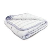 aden by aden + anais mini dream blanket, dove