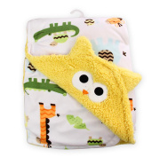 High Grade Super soft Double layer microfiber baby blanket with NICE embroidery