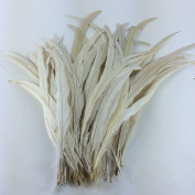 Sowder Off White Rooster Coque Tail Feathers 28cm - 36cm Lengh Pack of 50