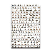 Poster With Exercise Image Custom Poster 50cm X 80cm Wall Sticker