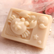 Grainrain Rectangle Mould Silicone Handmade DIY Moulds Soap Craft Art mould Zodiac Cancer