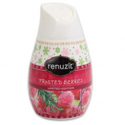 Renuzit Solid 210ml Frosted Berries 3-Pack