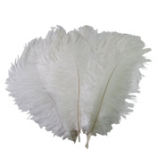 15-20cm Real Natural White Home Decor Ostrich Feathers DIY Craft Feather Pack of 50