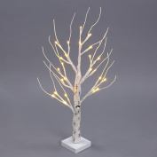 Excelvan HG-C001 0.6M/2.0FT 24 LEDs Battery Operated Desk Top Silver Birch Twig Tree Warm White Light White Branches for Home, Party, Christmas, Indoor Outdoor Decoration