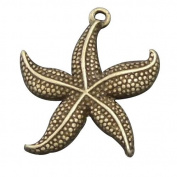 juliewang 20pcs Antiqued Bronze Tone Vintage Alloy Jewellery Starfish Charm Jewellery Finding .  24*23mm