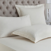 Great Knot, 100% Egyptian Cotton Sateen Stripe 250 Thread Count Oxford Pillow Pair
