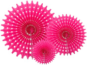 Party Partners PP TTF020-B 18 count Hanging Honeycomb Tissue Fan, Pink