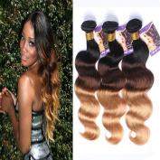 Kapelli Hair(TM) Ombre Hair Brazilian Body Wave Human Virgin Hair Remy Hair Extensions Weave Weft 3 Bundles/lot, 300g Total (100g Each) #T1b/4/27