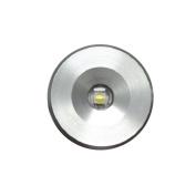 Lumitec Echo Courtesy / Accent Light, 12 Volt