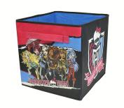 Mattel Monster High Collapsible Storage Bin, 30cm