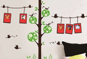Dream Wall Wall Decal with Photo Frames, Singing Birds