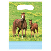 Creative Converting Wild Horses 8 Count Party Favour Loot Bags