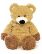 Kids Novelty Soft Padded Fleece Covered Hotwater Bottle - Teddy