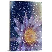 Artzee Designs Home Decor Ready to Hang Great Gift Idea Modern Rain Flower Photography Wall Art, 25cm x 30cm , Multicolor