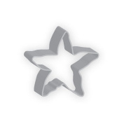 The American Cookie Cutter by Flavortools Starfish Cookie Cutter, 10cm , Set of 12