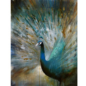 Yosemite Home Decor DCB627 Peacock Prowess Wild Life Painting, 90cm
