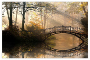 Picture Sensations Glow in The Dark Canvas Wall Art, Autumn Park