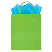 The Gift Wrap Company HALF114-27 Glossy Tote Bags (6 Pack), Medium, Lime Green