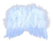 Touch of Nature 18cm by 15cm Feather Wings for Arts and Craft, Mini, Light Blue